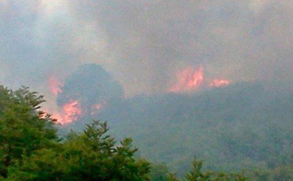 incendio forestal_Alumine