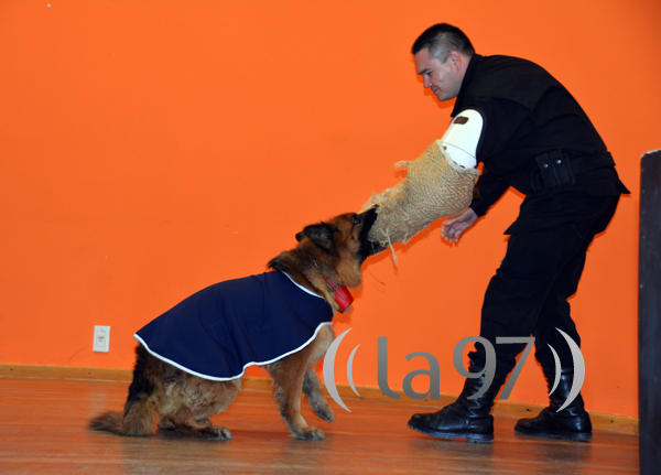 perros_policia
